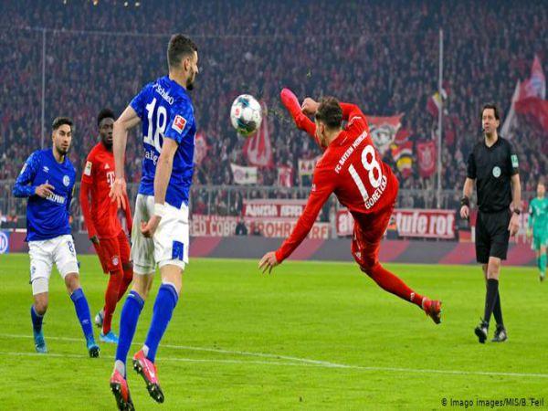 Nhận định tỷ lệ Schalke vs Bayern Munich, 21h30 ngày 24/1 - VĐQG Đức